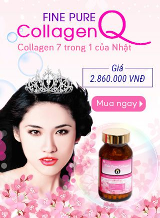 1483079315_banner-fine-pure-collagen-q.jpg