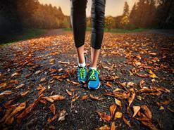 Mỗi ngày đi bộ bao nhiêu phút để có lợi cho sức khỏe?