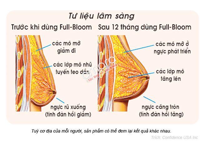 viên thuốc nở ngực Full Bloom chính hãng