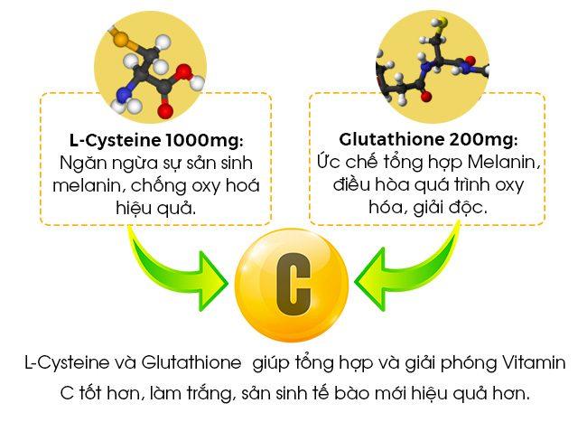 L-Cysteine và Glutathione