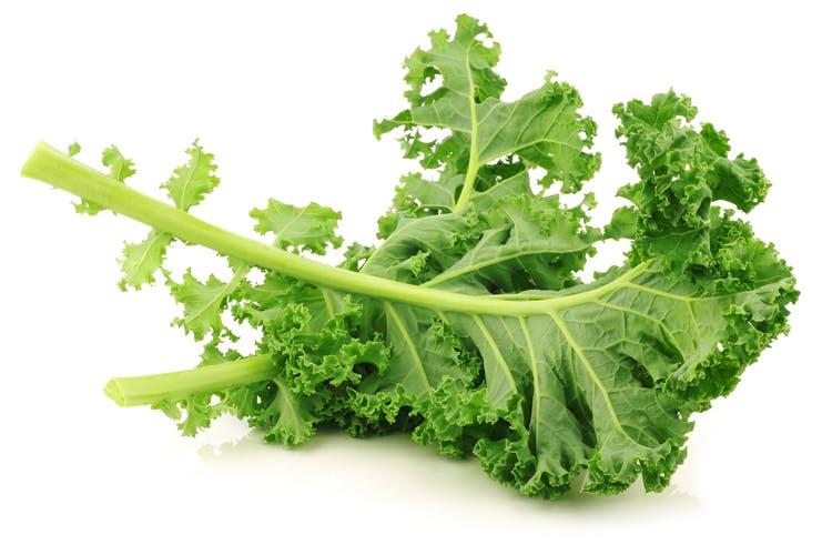 cải xoăn thực phẩm chứa nhiều Vitamin E tốt nhất