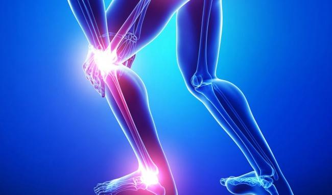 cây chữa bệnh xương khớp hiệu quả