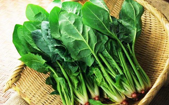 Rau chân vịt là thực phẩm giàu Vitamin E cho cơ thể