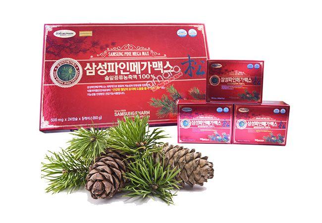 Tác dụng chữa bệnh của tinh dầu thông đỏ Hàn Quốc