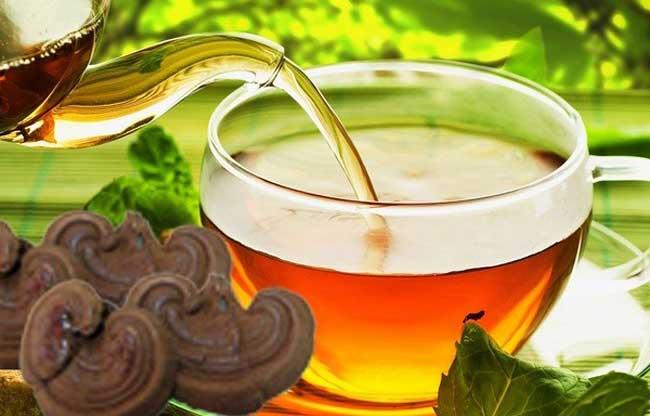 Linh chi Hàn Quốc sử dụng ở dạng trà