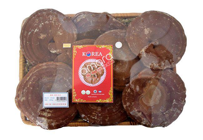 Nấm linh chi núi đỏ Hàn Quốc thượng hạng khay 1kg có giá từ 2.200.000 đồng