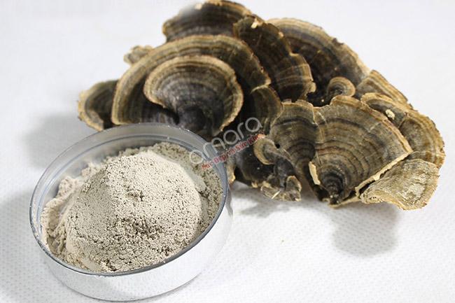 Việc sử dụng nấm Vân Chi thường xuyên sẽ giúp cải thiện sức khỏe sau điều trị.