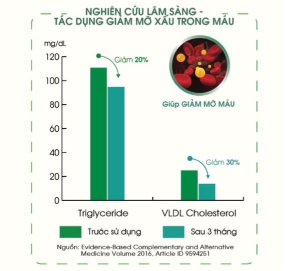 Tinh dầu thông đỏ Hàn Quốc giúp giảm xơ vữa