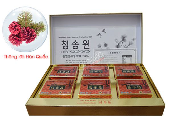 Tinh dầu thông đỏ là thần dược của Hàn Quốc